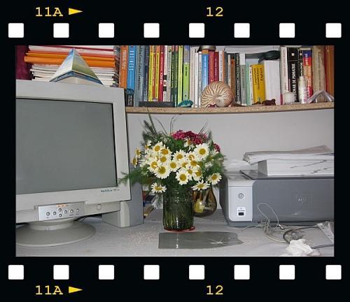 20060530_Iasi